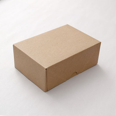 Business Card Box Kraft